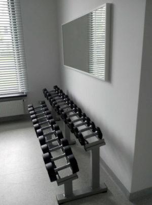 Sztangielki w siłowni
